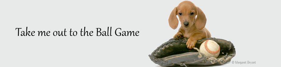Dachshund Ball Caps